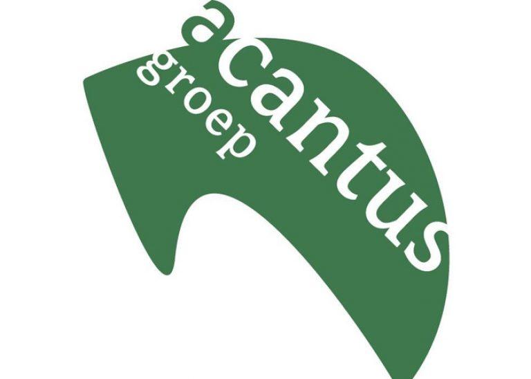 Acantus 700×500