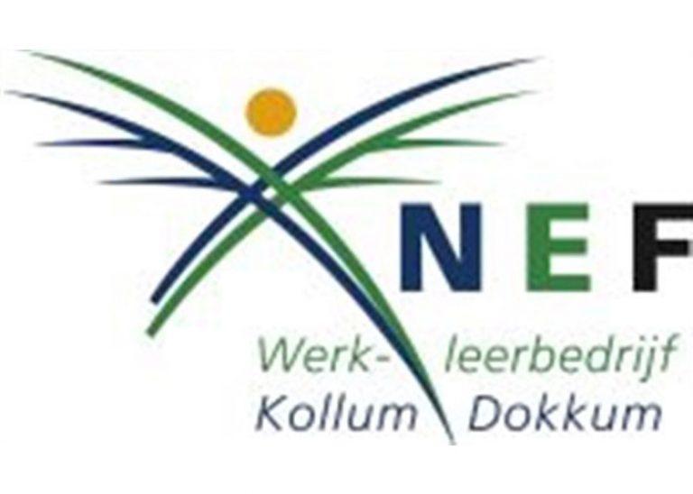 Logo NEF 700×500